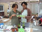 Master Gardeners – a model for skilling up the nation