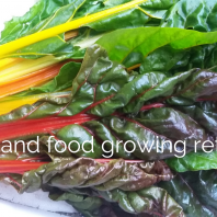 1 August High Summer Yoga and Food Growing Retreat