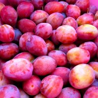 oaty fruit crumble